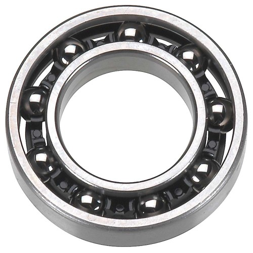 ASM Rear Bearing R21
